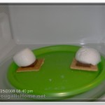 Smores in the microwave
