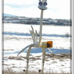 An Interesting Mail Box Near Brooks Montana