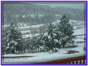 April Snow Showers in Montana