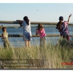 The Kids Tossing Rocks Into The Lake